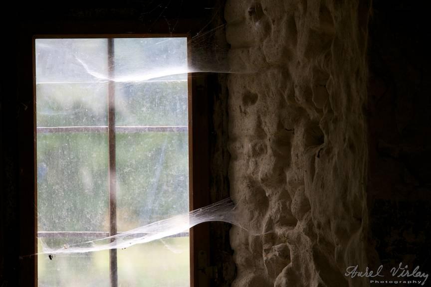 Panzele de paianjeni la fereastra skitului.