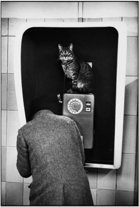 Franta Paris Subway station Tuileries 1977 foto Martine Franck.