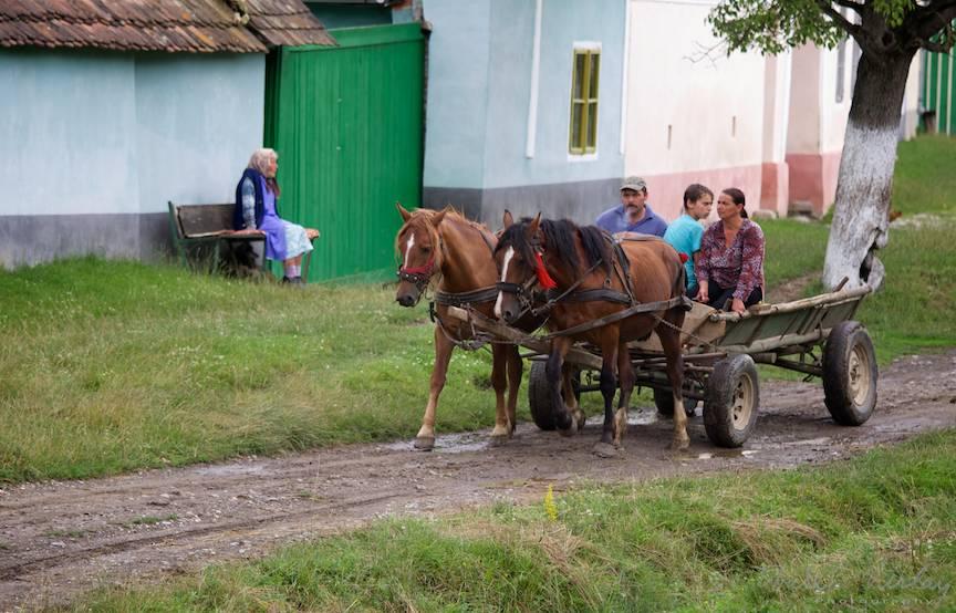 Fotografia de peisaj rural la ea acasa.