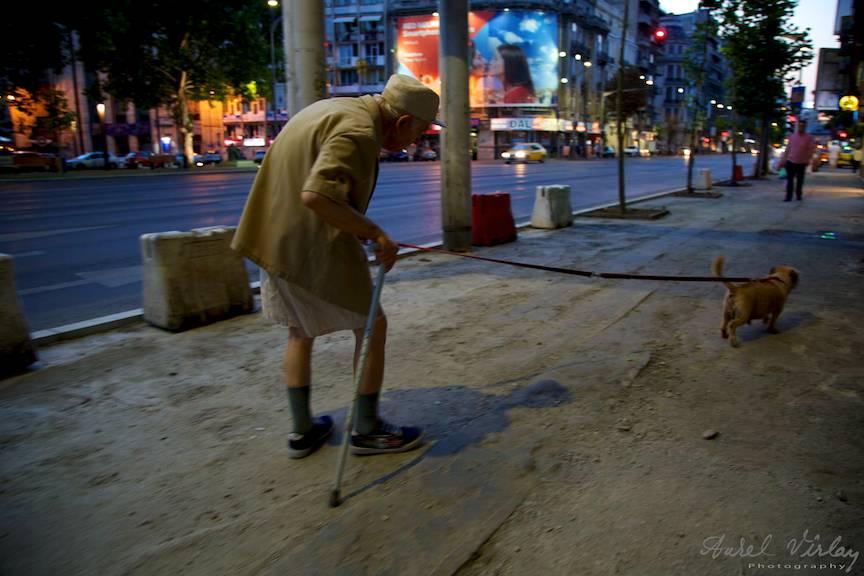 Batranul si cainele - noaptea pe Bulevardul Magheru Bucuresti.