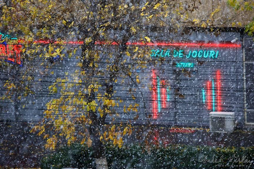 Fotografii prima ninsoare Bucuresti fulgi strada - FotoAurelVirlan e 12