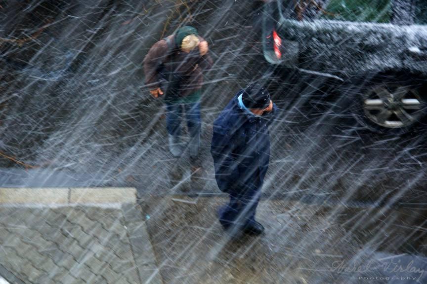 Fotografii prima ninsoare Bucuresti fulgi strada - FotoAurelVirlan e 33