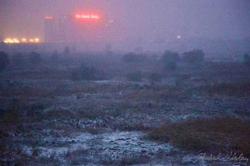 Fotografii prima ninsoare Bucuresti fulgi strada - FotoAurelVirlan e 50