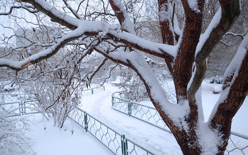 Fotografii ninsoare iarna Bucuresti - fotojurnalism Aurel Virlan - Emails 20