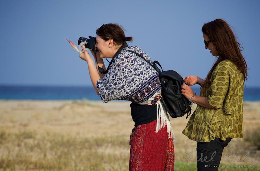 Workshop Fotografie Sardinia Italia Pasari_Flamingo - Foto_Aurel_Virlan Fotografa de pasari flamingo!