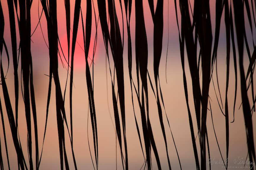 Rasarit-Soare-Rosu-Marea-Neagra-Mamaia_Foto_Aurel_Virlan5