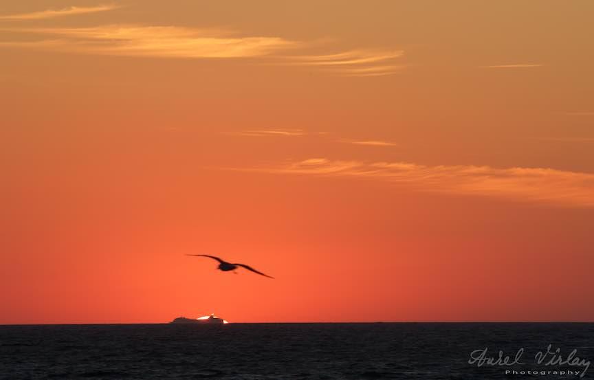 Vama_Veche_rasarit-soare-noapte-filme-plaja-Biblioteca-Foto-Aurel-Virlan43