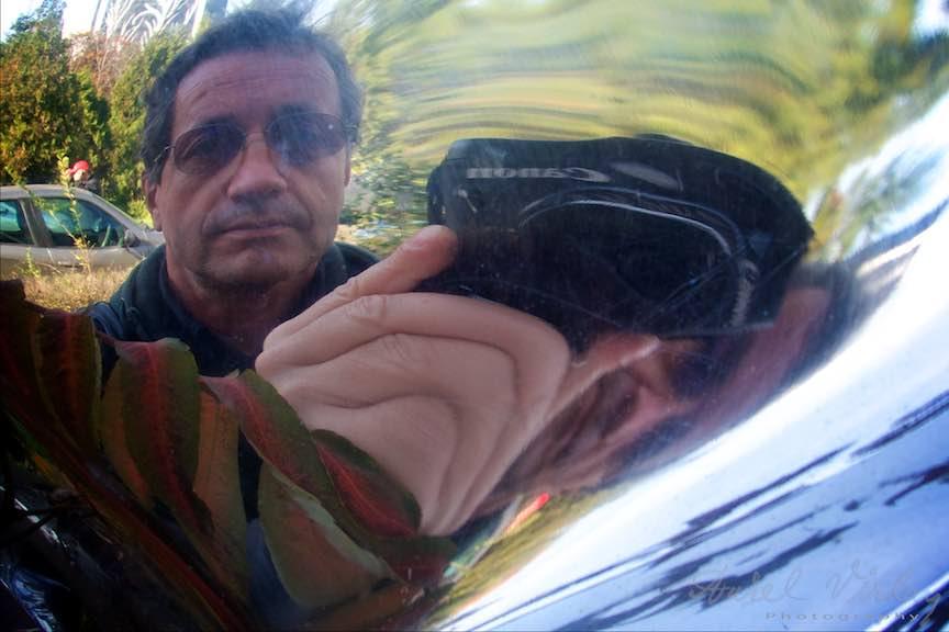 Toamna-Frunze-galbene-ruginii_Autumn-leaves_Foto_AurelVirlan-Emails52