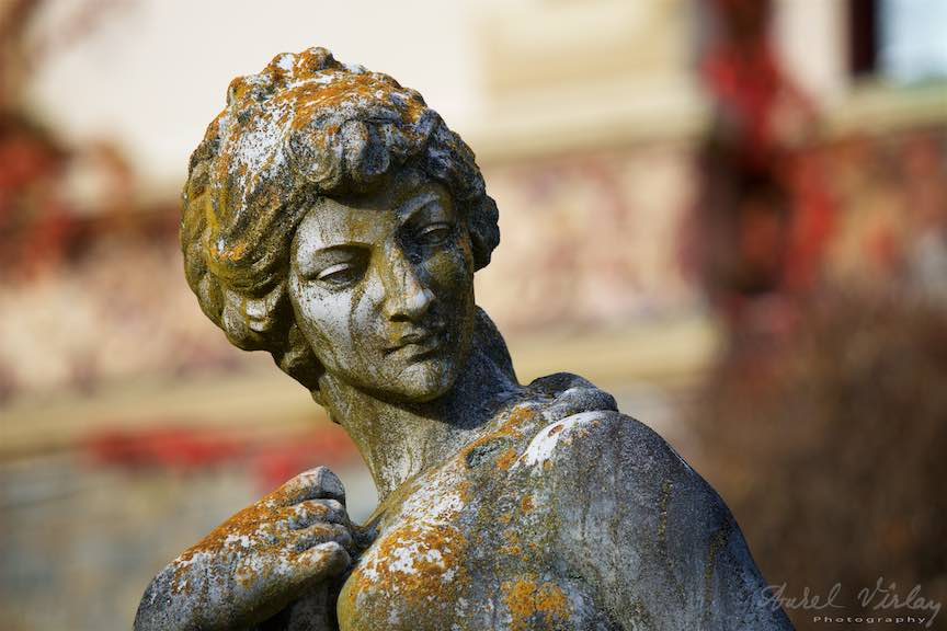 06-statuie-prim-plan-Castel-Peles-Sinaia_Fotografie_Aurel_Virlan