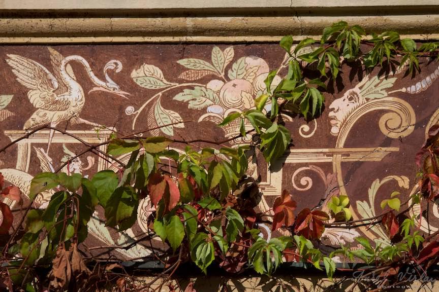 10-iedera-toamna-desene-firida-Castelul-Peles-Sinaia_Fotografie_Aurel_Virlan