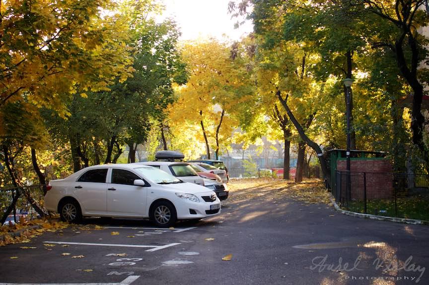 Toamna-cerul-rosu-copacii-galbeni-ruginii_Autumn-leaves_Foto_AurelVirlan-Emails31
