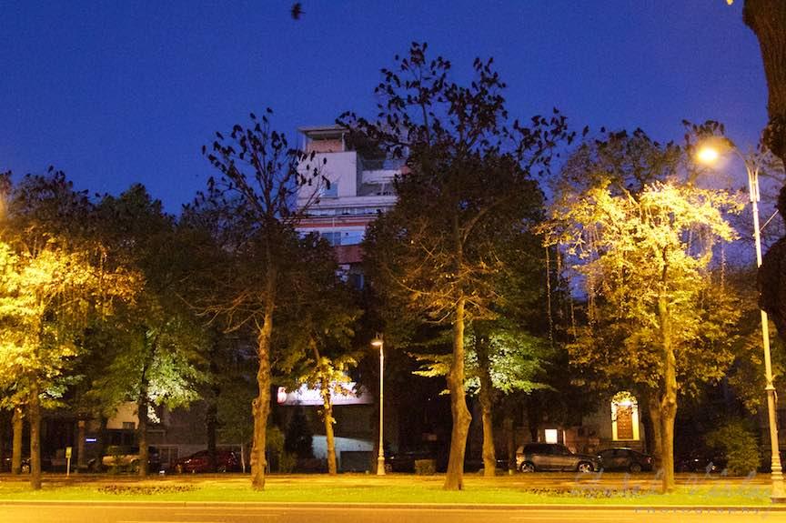 Toamna-cerul-rosu-copacii-galbeni-ruginii_Autumn-leaves_Foto_AurelVirlan-Emails32