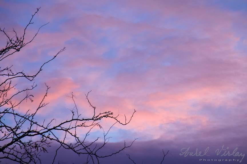 Toamna-cerul-rosu-copacii-galbeni-ruginii_Autumn-leaves_Foto_AurelVirlan-Emails40