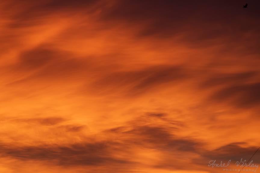 Rasarit-Soare-cerul-rosu_Foto-AurelVirlan-Emails12