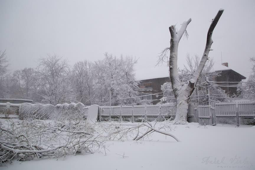 Iarna-ninsoare-Bucuresti-strada-FotoAurelVirlan_Emails17