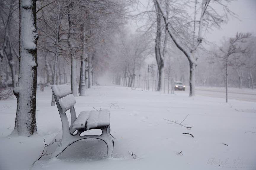 Iarna-ninsoare-Bucuresti-strada-FotoAurelVirlan_Emails19