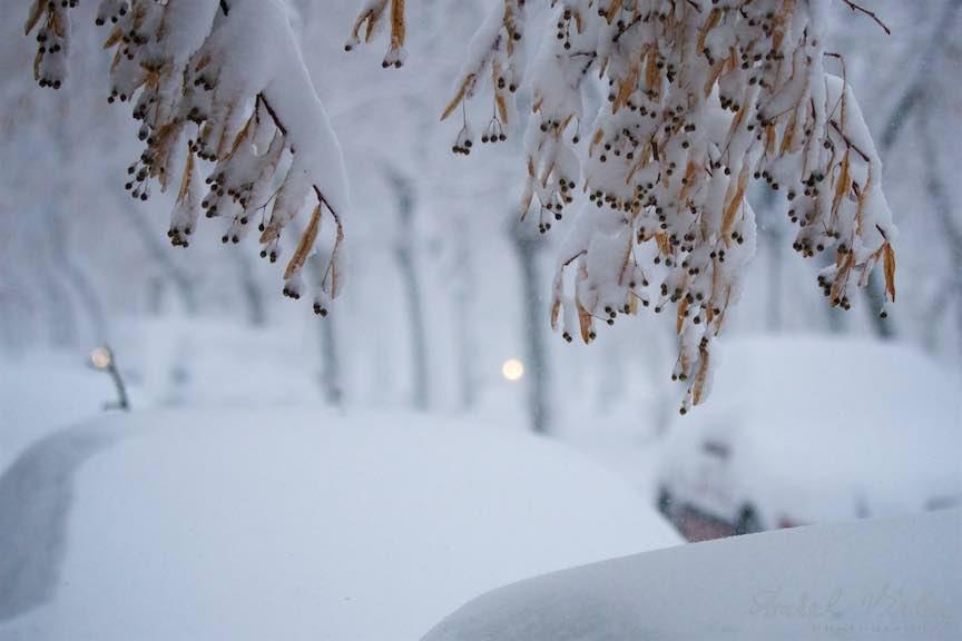 Iarna-ninsoare-Bucuresti-strada-FotoAurelVirlan_Emails25
