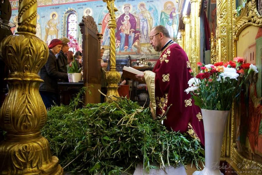 Fotografie la Liturghia Florii - Preotul sfinteste ramurile de salcie