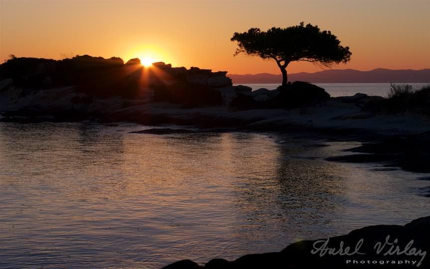 03-Grecia-Sithonia-Voruvourou-rasarit-soare-capac-singuratic-pinul_Fotografie-Aurel-Virlan