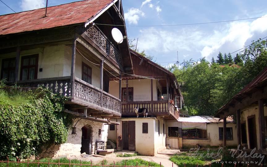 04-casa-rustica-cerdac-lemn-caini-paza-Sinaia_Fotografie-Aurel-Virlan