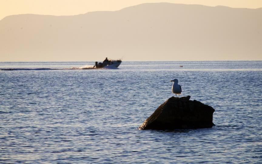 07-Grecia-Voruvourou-barca-pescarusul-stanca_Fotografie-Aurel-Virlan