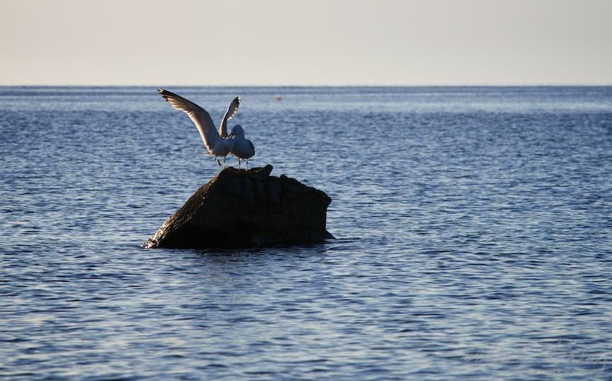 09-Greece-Voruvourou-pescarusii-stanca_Fotografie-Aurel-Virlan