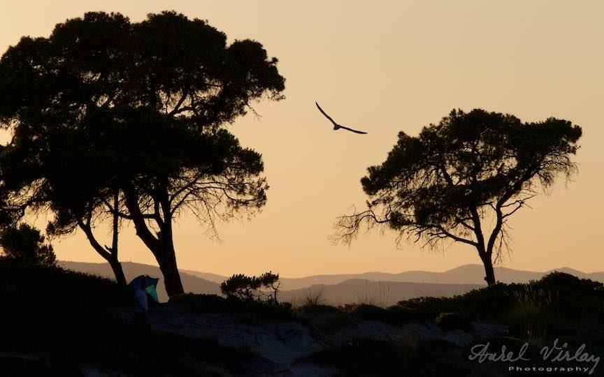 21-Grecia-Vourvourou-pescarus-zburand-plutind-apus-soare_Fotografie-Aurel-Virlan