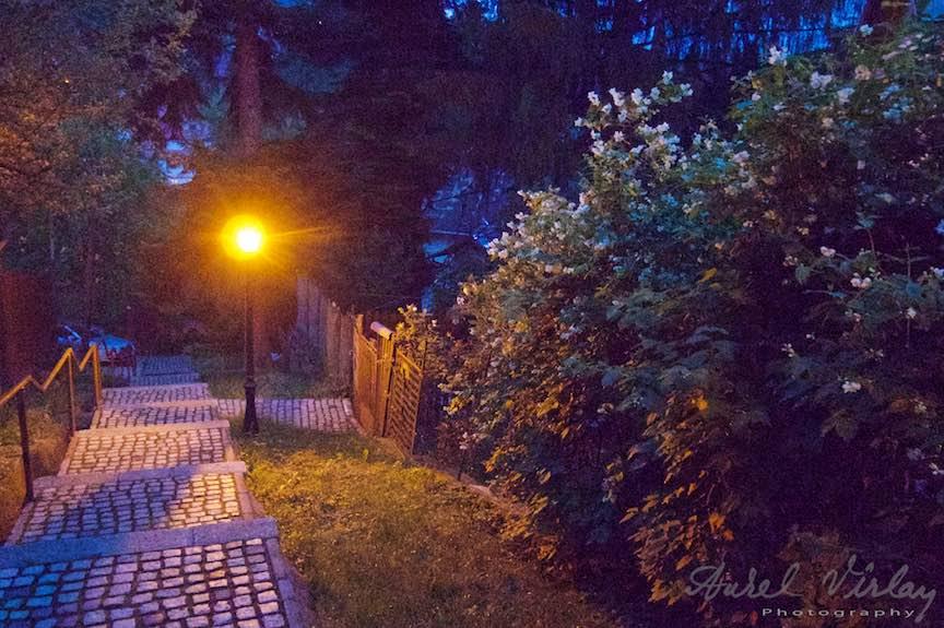28-poteci-trepte-Sinaia_Fotografia-de-noapte-Aurel-Virlan