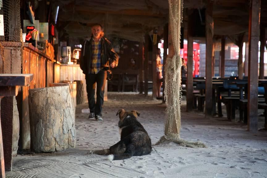 16-Stuf-bar-Vama-Veche-Cainele-de-paza-Fotografie-Aurel_Virlan