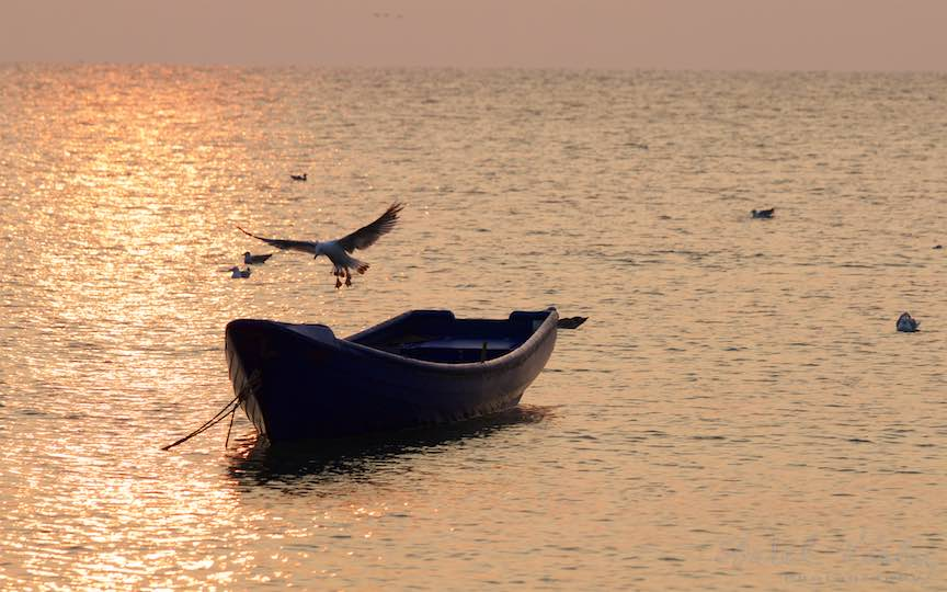19-Vama-Veche-Pescarusul-barca-rasarit-soare-Fotograful-Aurel-Virlan