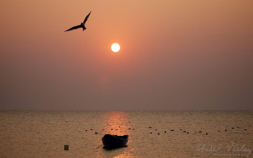 20-Vama-Veche-Pescarus-zbor-barca-rasarit-soare-Fotografie-Aurel-Virlan