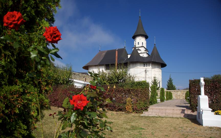 36-trandafiri-rosii-cimitir-manastirea-hadambu-iasi-romania_fotograf-aurel-virlan