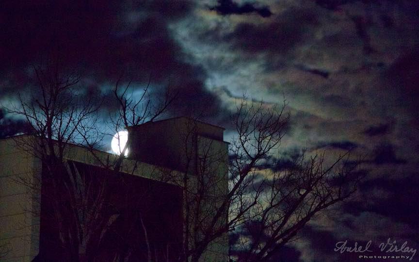 05-bucurestiul-orasul-meu-luna-plina-noapte-nori-copaci_foto-aurelvirlan_emails13