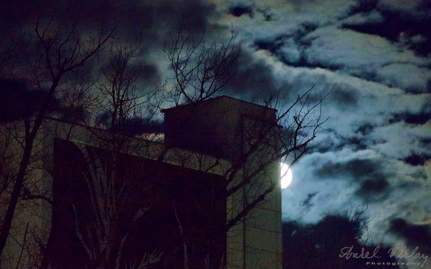 06-bucurestiul-orasul-meu-luna-plina-noapte-nori-copaci_foto-aurelvirlan_emails12