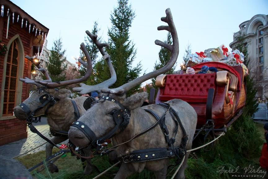 bucharest-christmas-market-piata-constitutiei-1-decembrie_foto-aurelvirlan_emails44