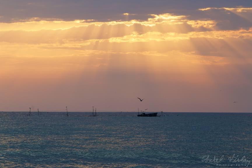 Lotca pescarilor de la Cherhana laminata divin in dimineata asta!
