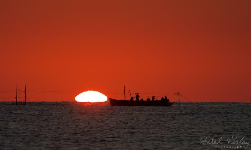 La pescuit in rasarit de soare.